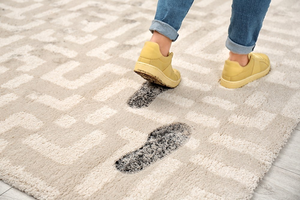 5 Reasons to Pick a Professional Rug and Carpet Cleaning Service
