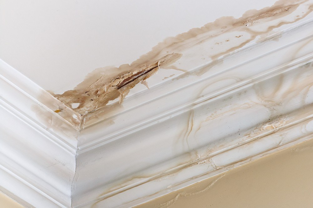 Steps to Take Before and After Water Damage